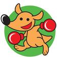 Kangaroo Boxing vector image