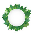 leaves background circle vector image vector image