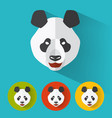 panda portrait with flat design vector image vector image