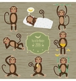 Set of Chinese Zodiac - Monkeys vector image