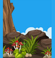 background scene with mushrooms and rocks vector image