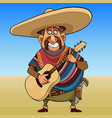 cartoon cheerful mustache man in a sombrero with a vector image