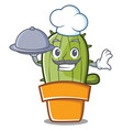 chef cute cactus character cartoon vector image vector image