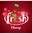cherry juice with berries vector image vector image