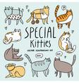 cute special cats cartoon set vector image vector image