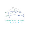 dolphin outlines logo vector image vector image