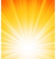 Orange summer sun light burst vector image vector image