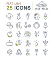 Set Flat Line Icons Vegetables vector image vector image