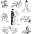 wedding pictures vector image