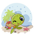 cartoon water turtle on beach vector image