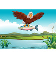 Eagle catching fish in the lake vector image