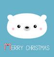 merry christmas candycane text polar white bear vector image