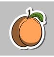 PeachSticker vector image vector image