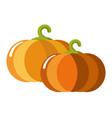 ripe juicy sweet pumpkins with curled stem vector image
