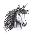 unicorn mystic magic horse animal sketch vector image vector image