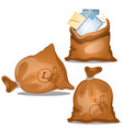 a set canvas bags letters and parcels in vector image vector image