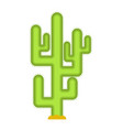 cactus isolated large peyote from desert on white vector image vector image