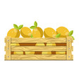 fresh sour lemons with leaves in wooden box for vector image