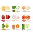 Set Of Fresh Vegetables Icon vector image vector image