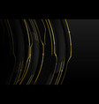 abstract background golden line with dark and vector image vector image