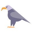 clipart a large colorful bird with sharp vector image