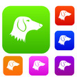 dachshund dog set collection vector image vector image