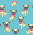 french bulldog seamless pattern dog vector image