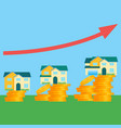 houses and price that depends on its size vector image vector image