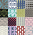 Set of seamless patterns with ornaments vector image