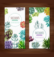 succulent plants vertical banners vector image vector image