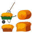 dry hay in bucket and wagon vector image