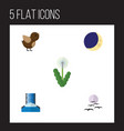 flat icon natural set of gull half moon bird and vector image vector image