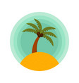 palm trees color rounded icon of a palm vector image