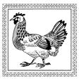 pen drawing chicken vector image vector image