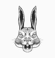 screaming hare or mad rabbit for tattoo or label vector image