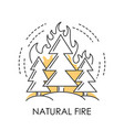 wildfire or natural fire ecological disaster vector image vector image