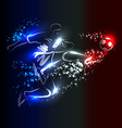 European championship football vector image