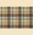 beige abstract plaid seamless pattern vector image vector image