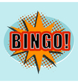 Cartoon BINGO Design element for the site vector image vector image