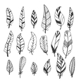 Ethnic feather set Hand drawn collection vector image