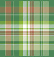 green abstract modern plaid seamless pattern vector image vector image