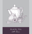 monochrome sketch of teapot cup black tea leaves vector image