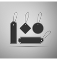 Price tag flat icon on grey background vector image