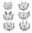 doodle forest animals vector image