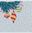 beautiful christmas catd with fir branches and vector image vector image