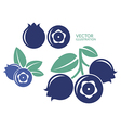 Blueberry Icon set vector image vector image
