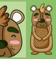 cute bear animal cartoon vector image