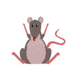 cute grey mouse sitting on the floor with raised vector image vector image