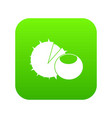 hazelnuts icon digital green vector image