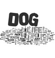 it s a dog s life text background word cloud vector image vector image